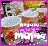 caluga tazon mama 2