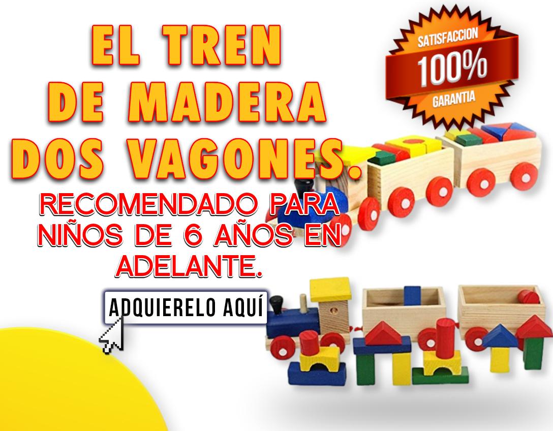EL TREN DE MADERA DOS BAGONES